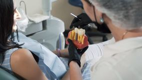 Dentist shows to patient model of teeth. Woman on consultation in dental clinic, slow motion stock video