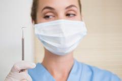 Dentist in surgical mask holding dental explorer Royalty Free Stock Images
