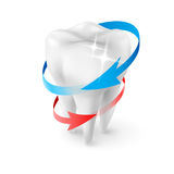 Dentist Symbol. Isometric Illustration Herbal and Fluoride Protection Icon of a Tooth Stock Image