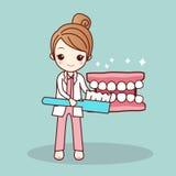 Dentist teach you brush teeth Stock Images