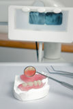 Dentist tools with acrylic denture (False teeth) Royalty Free Stock Images