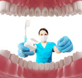 Dentist with tools. Concept of dentistry, whitening, oral hygien Stock Photos