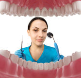 Dentist with tools. Concept of dentistry, whitening, oral hygien Stock Images