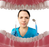 Dentist with tools. Concept of dentistry, whitening, oral hygien Royalty Free Stock Images