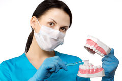 Dentist with tools. Dentist. The concept of dentistry, whitening Royalty Free Stock Photos