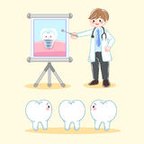 Dentist with tooth. Cute cartoon dentist with tooth and implant Royalty Free Stock Photos
