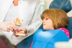 Dentist with toothbrush, denture, and little patient Stock Photos