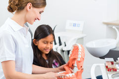 Dentist with toothbrush, denture, and little patient Royalty Free Stock Images