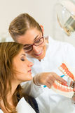 Dentist with toothbrush, denture, and patient Royalty Free Stock Photos