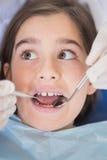 Dentist using dental explorer and angled mirror Royalty Free Stock Photo