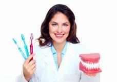 Dentist woman. Dentist woman with the teeth model. Dental health care clinic Stock Photos