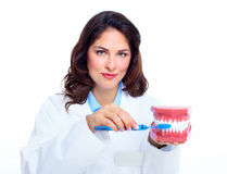Dentist woman. Stock Image