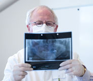 Dentist with xray in hand Royalty Free Stock Photos