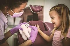 Dentista che impara bambina circa i denti immagini stock
