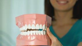 Dentista che mostra il modello della mandibola, dando lezione sui denti adeguati e sulla cura della cavità orale archivi video