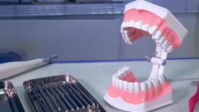 Dentista degli strumenti e primo piano delle mandibole della disposizione nel posto di lavoro stock footage