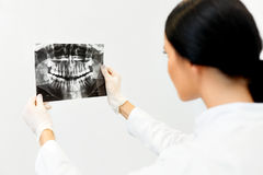Dentista fêmea Looking no raio X dental na clínica Fotografia de Stock Royalty Free