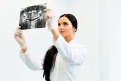 Dentista fêmea Looking no raio X dental na clínica Imagens de Stock