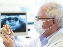 Dentista mayor Fotos de archivo