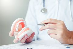 Dentista que aprende como escovar os dentes fotografia de stock royalty free