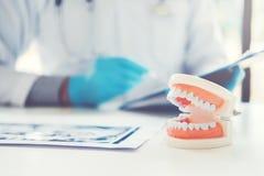 Dentista que aprende como escovar os dentes foto de stock