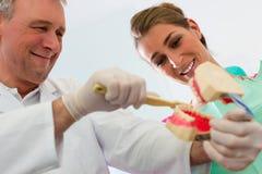 Dentista que explica a escovadela de dentes ao paciente Foto de Stock Royalty Free