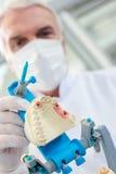 Dentista que prepara o molde dental fotografia de stock