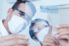 Dentistas que olham o raio X fotografia de stock