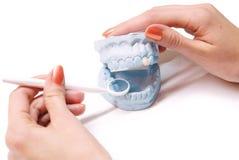 Dentiste Photographie stock libre de droits