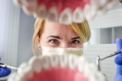 Dentiste au-dessus de la bouche patiente ouverte du ` s regardant dans des dents Soin oral I images libres de droits