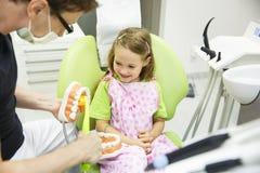 Dentiste balayant un modèle dentaire images libres de droits