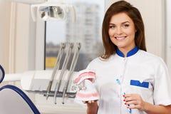 Dentiste de femme avec la mâchoire en plastique images libres de droits