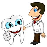Dentiste et dent Photo stock