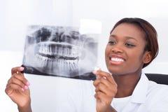 Dentiste féminin regardant le rayon X de mâchoire dans la clinique images stock