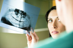 Dentists Consulting Royalty Free Stock Photo