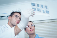 Dentists looking at x-ray Royalty Free Stock Image