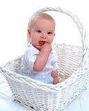 Dentition-Baby im Korb lizenzfreie stockbilder