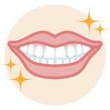 Dentition - bonne condition illustration de vecteur