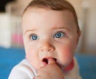 Dentitionskonzept Baby mit dem Finger im Mund Lizenzfreies Stockbild
