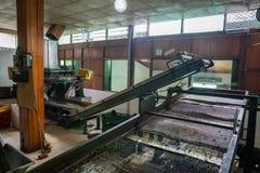Dentro da fábrica do chá Imagem de Stock Royalty Free