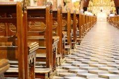 Dentro de la basílica de San Francisco en la provincia de Salta fotografía de archivo libre de regalías