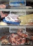 Dentro de um congelador frio. Fotos de Stock Royalty Free