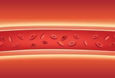 Dentro dei vasi sanguigni illustrazione di stock