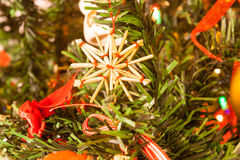 Dentro del árbol de navidad foto de archivo