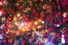 Dentro del árbol de navidad imágenes de archivo libres de regalías