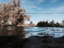 Dentro del agua Fotos de archivo libres de regalías
