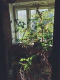 Dentro del edificio de la izquierda y del campamento de verano soviético olvidado Skazka no lejos de Moscú Fotos de archivo