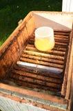 Dentro del envase de la colmena con el jarabe dulce para las abejas de alimentación Foto de archivo libre de regalías