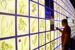 Dentro del pabellón del russion en la expo 2015, Milán Foto de archivo libre de regalías