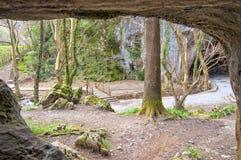 Caverne di Zugarramurdi in Navarra Fotografie Stock